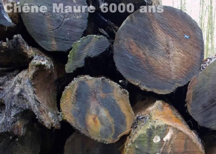 Parquet massif chene maure - parquet de collection - noir brut - Louvres