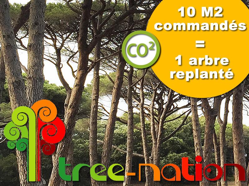 10 m2 achetés - 1 arbre planté