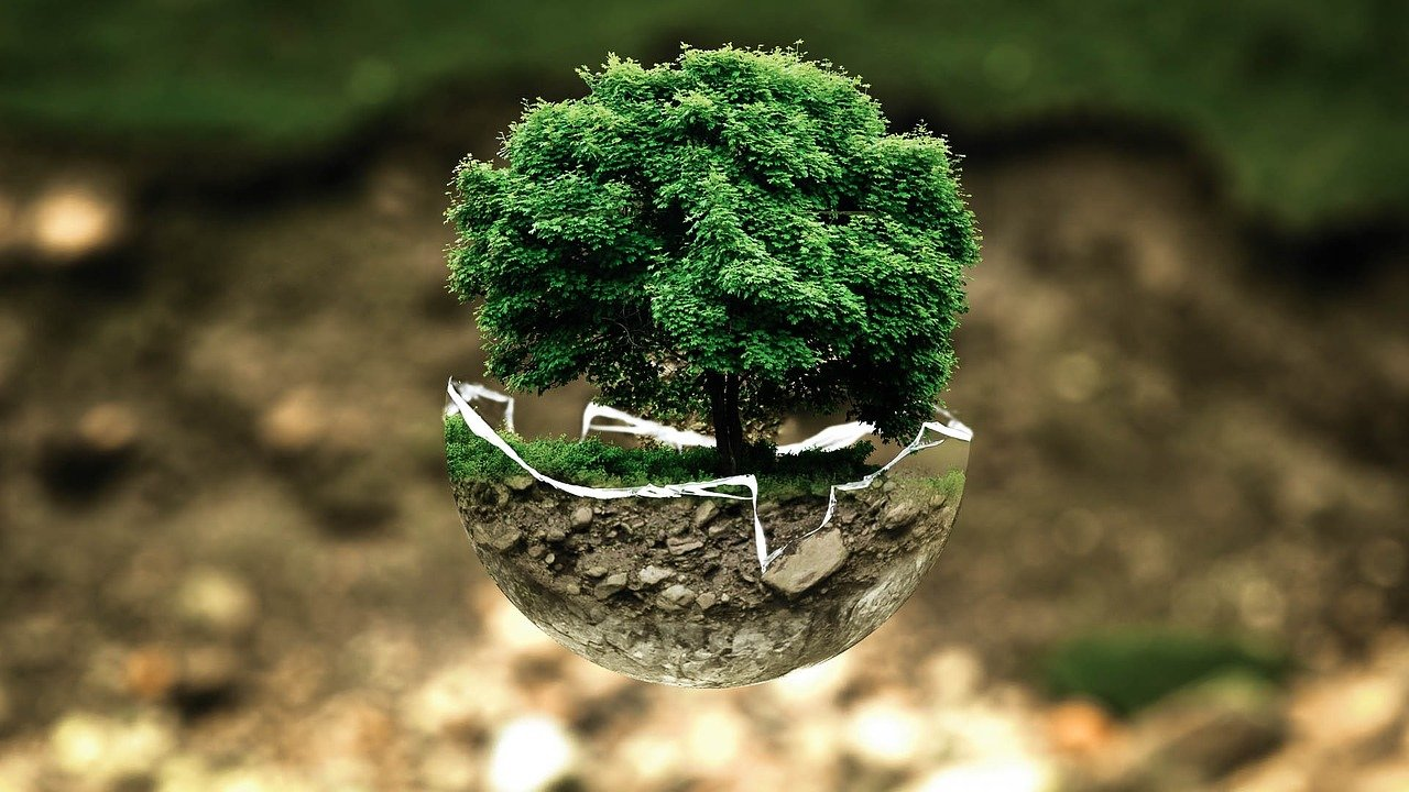 parquet ecologie