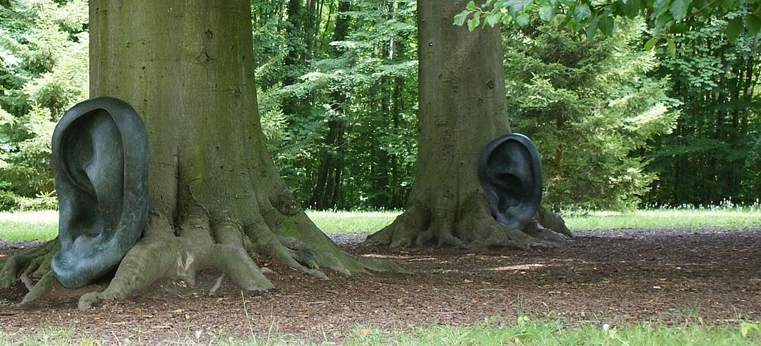 contrecollé massif parquet bois écoute conseils experts